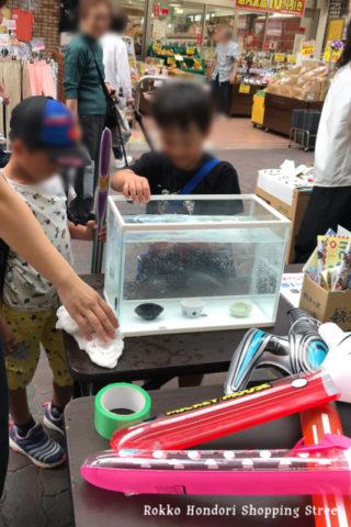 六甲本通商店街夏まつりでコイン落とし